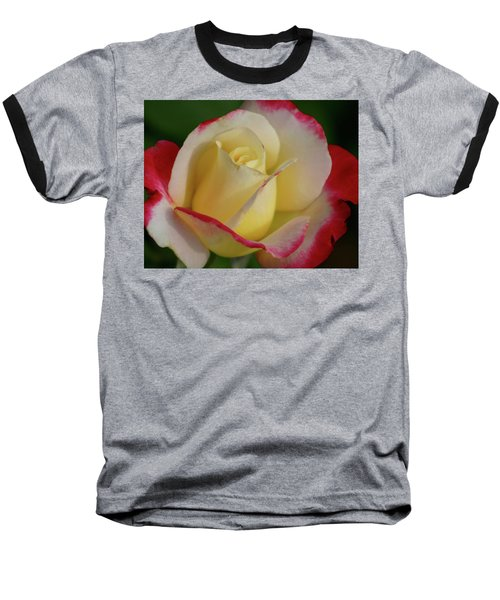 Rose 3913 Baseball T-Shirt