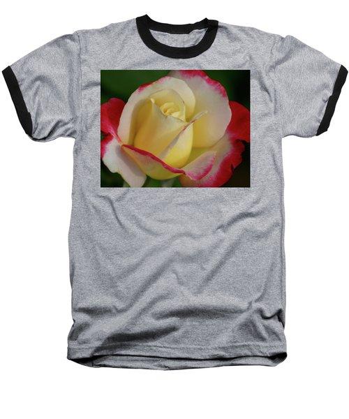 Rose 3913 Baseball T-Shirt