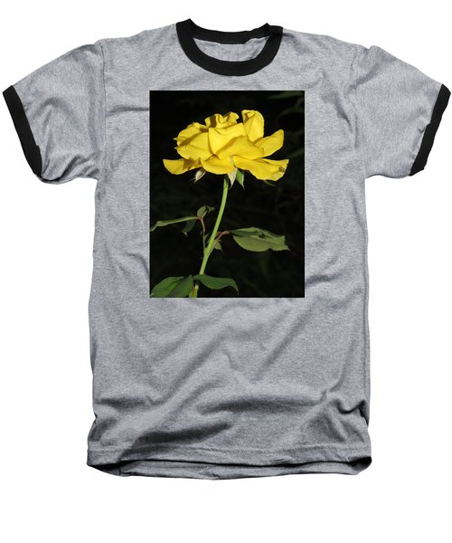 Baseball T-Shirt featuring the photograph Rose 5 by Phyllis Beiser