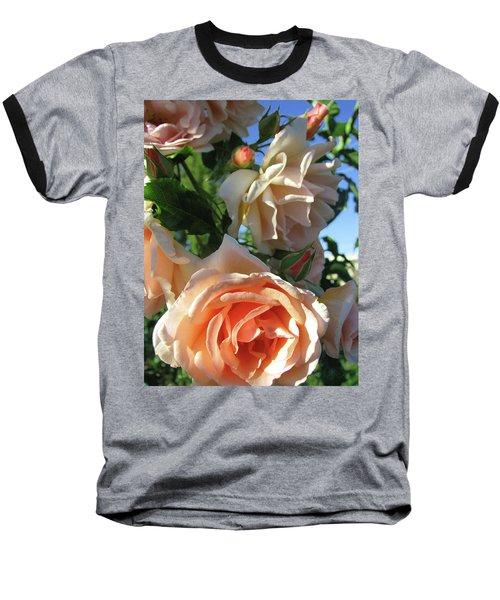 Rose Di Vine Baseball T-Shirt by Brooks Garten Hauschild