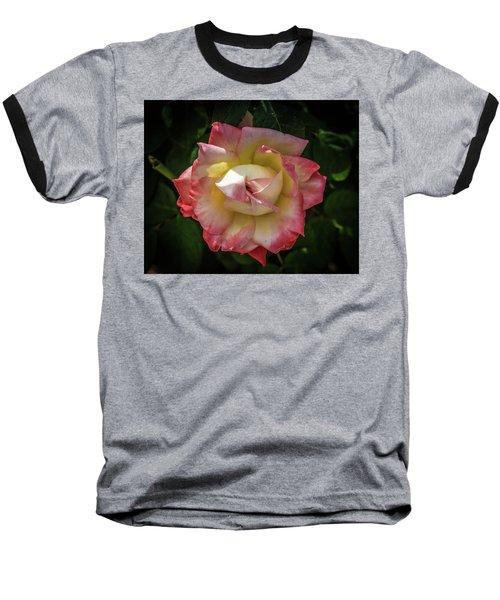Rose From Mable Ringling's Garden Baseball T-Shirt