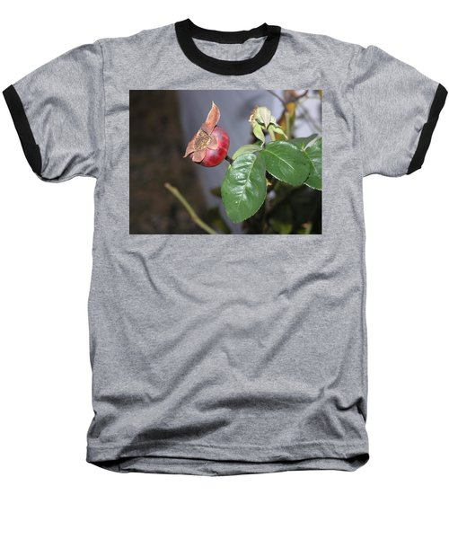 Rose Hip Baseball T-Shirt