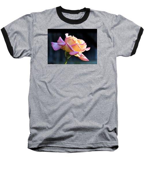Rose In Sunshine Baseball T-Shirt by Josephine Buschman