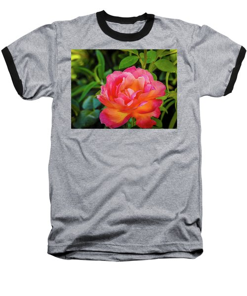Rose In The Evening Baseball T-Shirt
