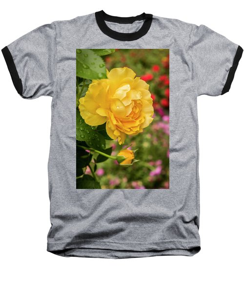 Rose, Julia Child Baseball T-Shirt