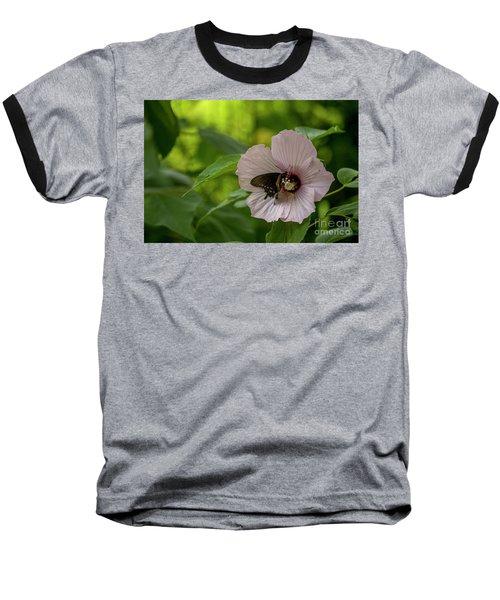 Rose Mallow Baseball T-Shirt