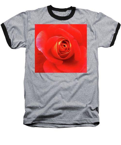 Rose Baseball T-Shirt by Mary Ellen Frazee