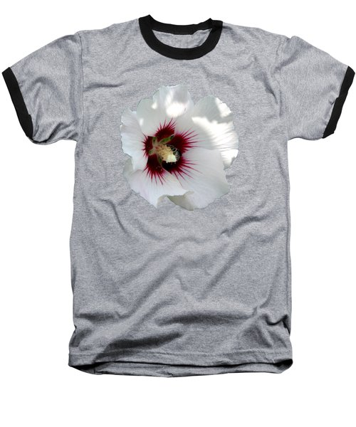 Rose Of Sharon Flower And Bumble Bee Baseball T-Shirt by Rose Santuci-Sofranko