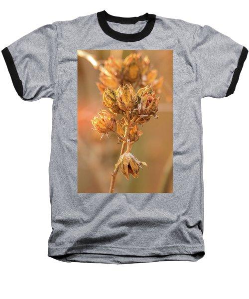 Rose Of Sharon In Winter Baseball T-Shirt