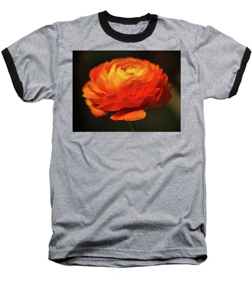 Rose Of Spring Baseball T-Shirt