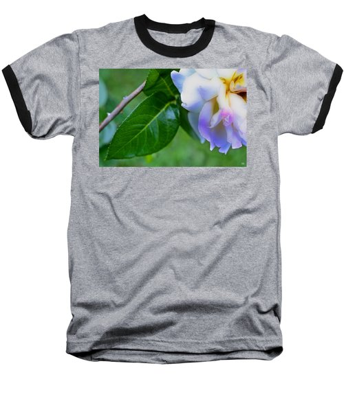 Rose Pedals Baseball T-Shirt