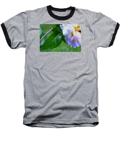 Rose Pedals Baseball T-Shirt