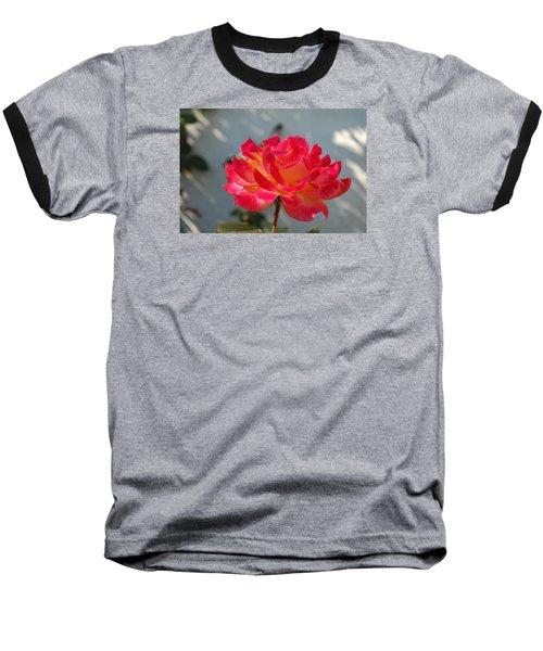 Rose Baseball T-Shirt
