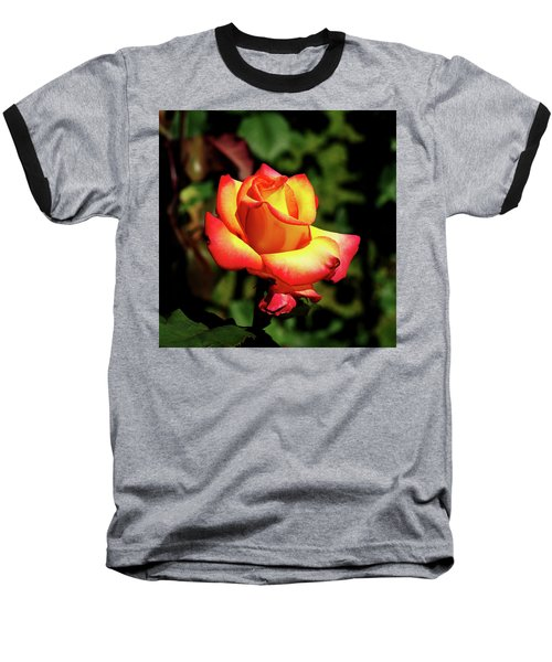 Rose To Remember Baseball T-Shirt by Dale Stillman
