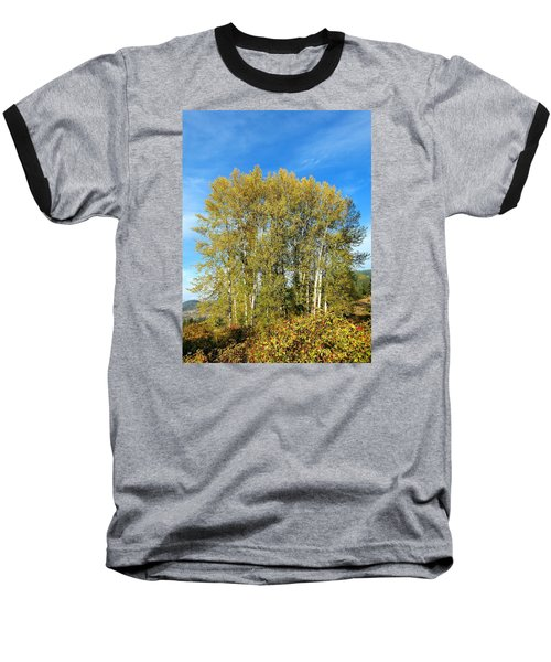 Rosehips And Cottonwoods Baseball T-Shirt by Will Borden