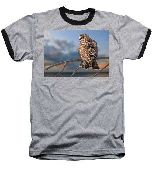 Rough Legged Hawk Baseball T-Shirt