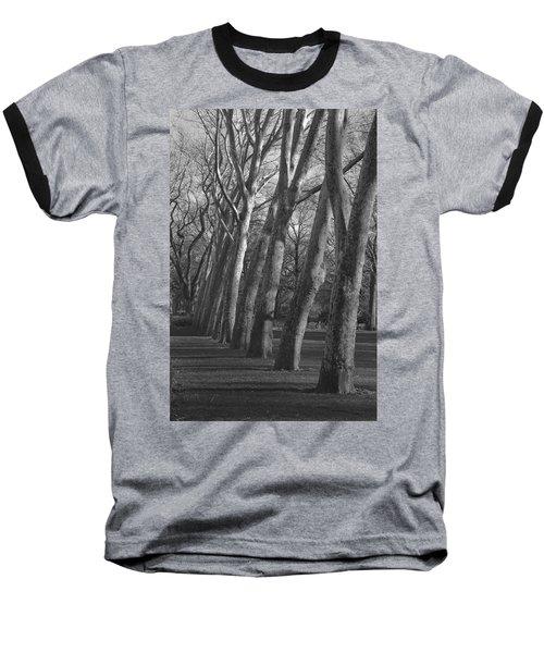 Row Trees Baseball T-Shirt