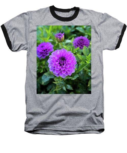 Royal Dahlia Delight Baseball T-Shirt