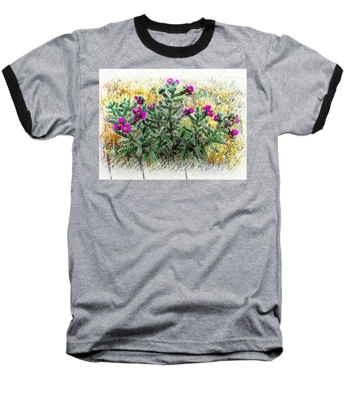 Royal Gorge Cactus With Flowers Baseball T-Shirt by Joseph Hendrix