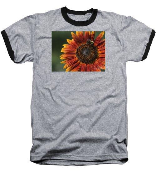 Royal Harvest Baseball T-Shirt