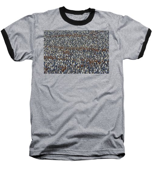 Baseball T-Shirt featuring the photograph Royal Layers by Tony Beck