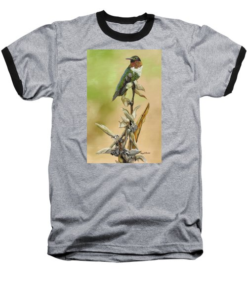 Ruby Throated Hummingbird Study Baseball T-Shirt