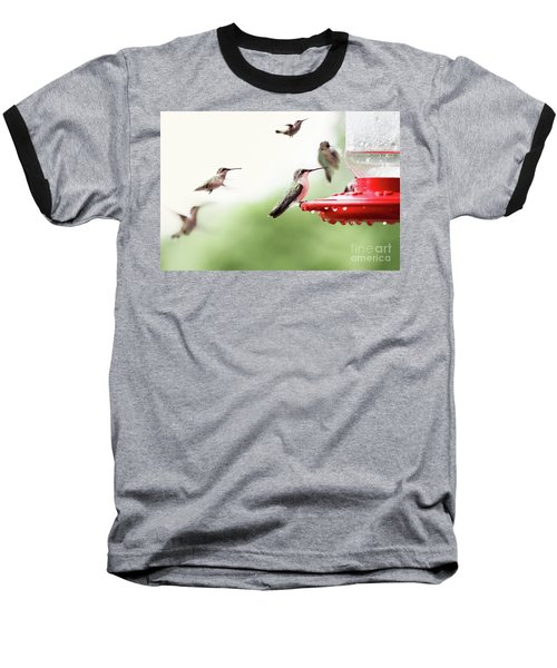 Baseball T-Shirt featuring the photograph Ruby-throated Hummingbirds by Stephanie Frey