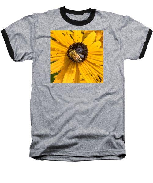 Rudbeckia With Bee Baseball T-Shirt