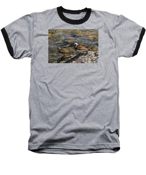 Ruddy Turnstone Baseball T-Shirt by Dan Hefle