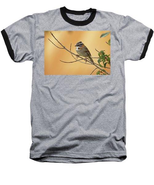 Rufous-collared Sparrow Baseball T-Shirt