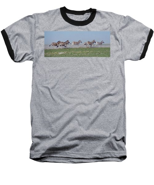 Running Zebras Baseball T-Shirt