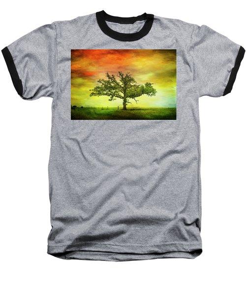 Rushford Tree On 43 Baseball T-Shirt