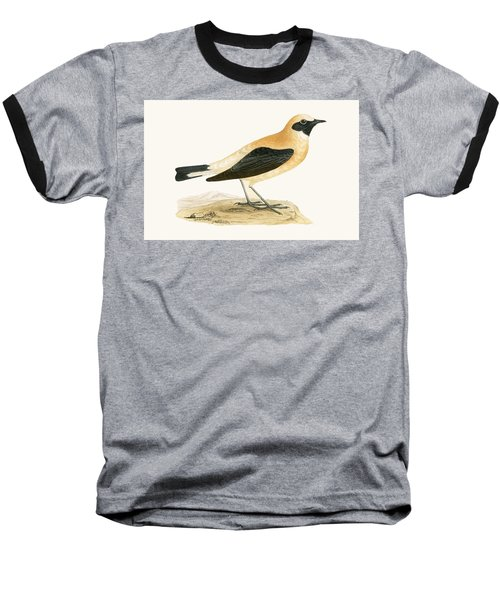 Russet Wheatear Baseball T-Shirt by English School