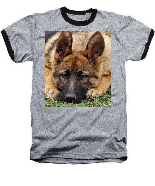 Sable German Shepherd Puppy Baseball T-Shirt