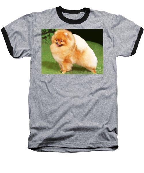 Sable Pomeranian Baseball T-Shirt