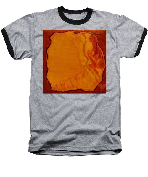Safe Prison Baseball T-Shirt