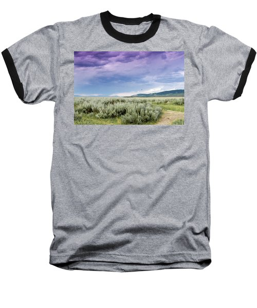 Sage Fields  Baseball T-Shirt by Dawn Romine