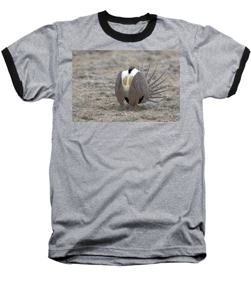 Sage Grouse Baseball T-Shirt