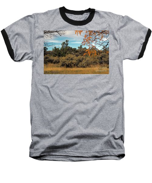 Sagebrush And Lava Baseball T-Shirt by Cindy Murphy - NightVisions