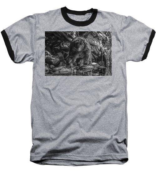Salmon Seeker Black Bear  Baseball T-Shirt