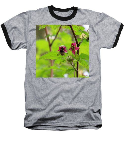 Salmonberry Honey Baseball T-Shirt