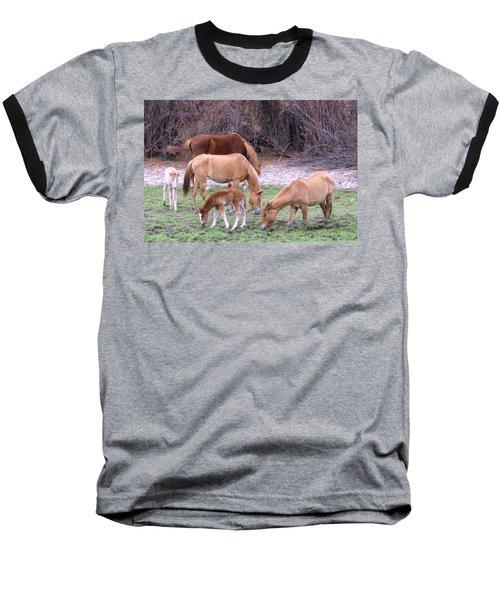Salt River Wild Horses In Winter Baseball T-Shirt