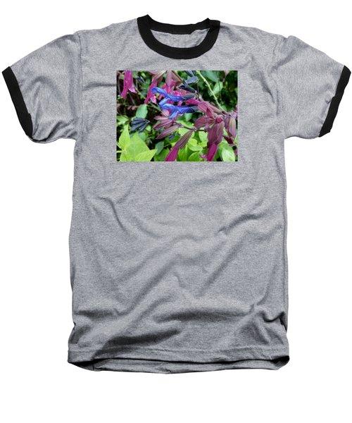 Salvia Baseball T-Shirt by Tim Good
