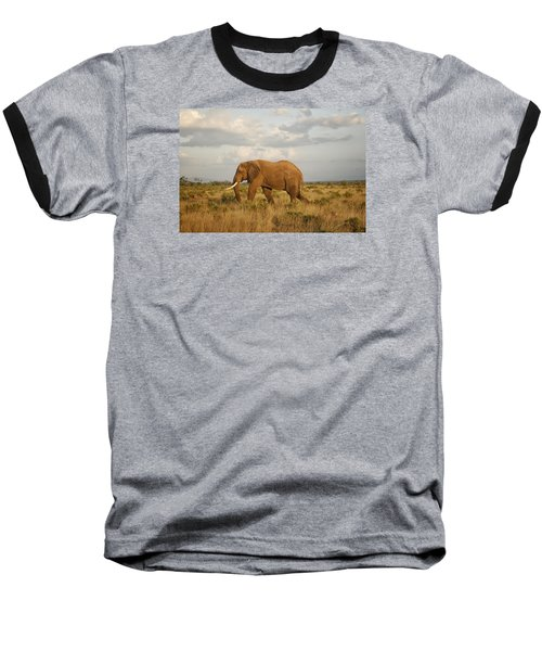 Samburu Giant Baseball T-Shirt by Gary Hall