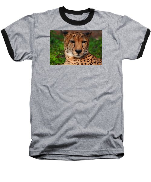 Baseball T-Shirt featuring the photograph Samson by Michiale Schneider