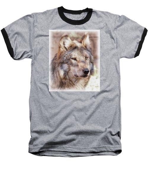 Sancho Baseball T-Shirt by Elaine Malott