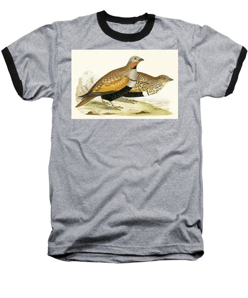 Sand Grouse Baseball T-Shirt