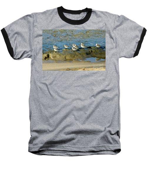 Sanderling Gather Baseball T-Shirt