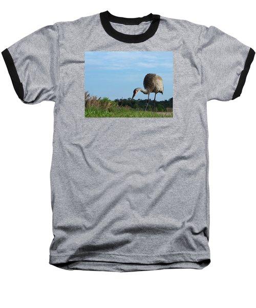 Sandhill Crane 018 Baseball T-Shirt by Chris Mercer