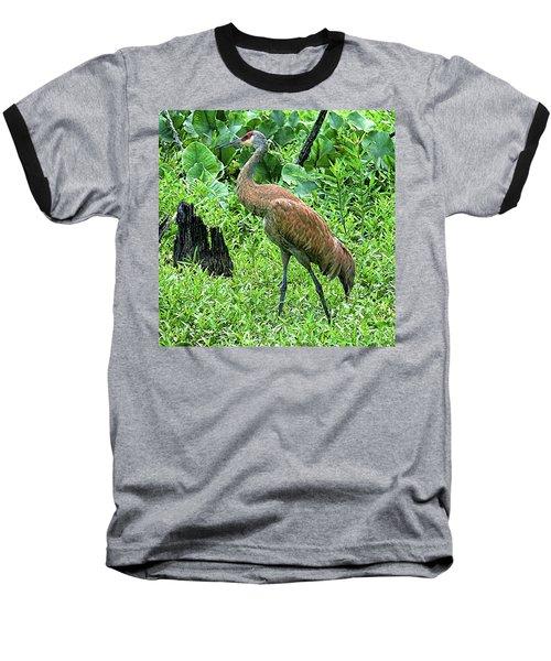Sandhill Crane At Sandy Ridge Reservation Baseball T-Shirt